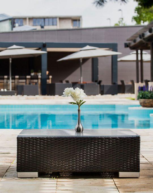 Vanagupė baseino terasa